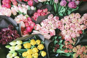 Self-Care Habits - Assortment of flowers